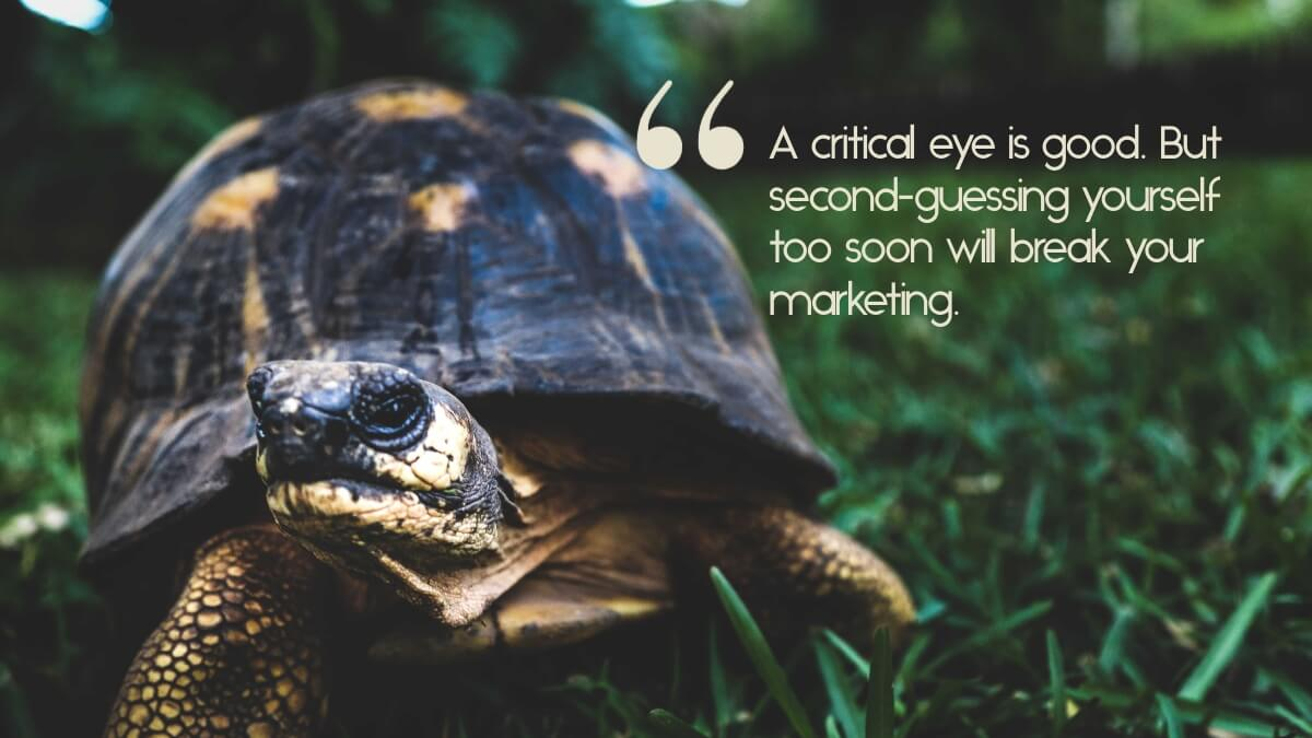 "A turtle crawling in grass, with the caption, ""A critical eye is good. But second-guessing yourself too soon will break your marketing."""